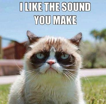 Grumpy_Cat_I_Like_The_Sound_You_Make